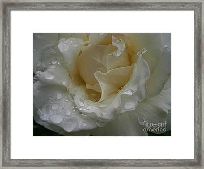 Light Rain Framed Print by Drew Shourd
