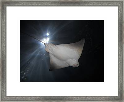 Framed Print featuring the photograph Light Ray by Kristen R Kennedy