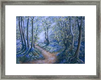Light Framed Print by Rosemary Colyer