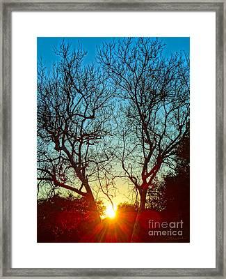 Light Sanctuary Framed Print