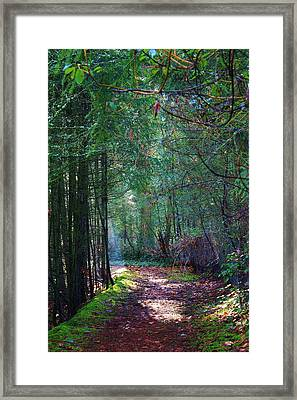 Light The Way Framed Print by Bruce Bley