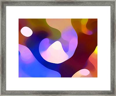 Light Through Branch Framed Print by Amy Vangsgard