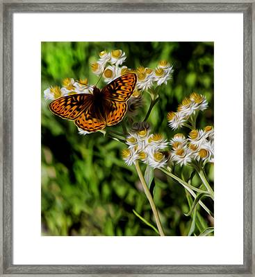 Light To The Touch. Framed Print