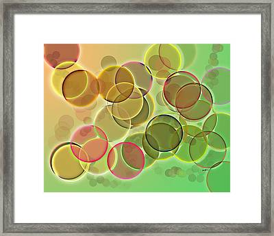 Lightbright Framed Print by Anthony Caruso