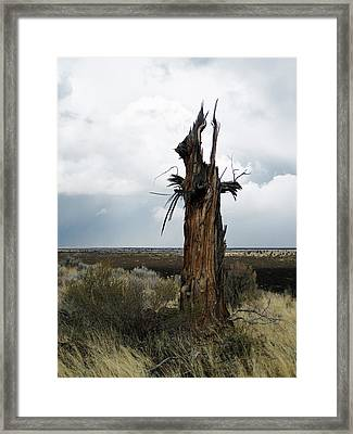 Lightening Strikes Framed Print by Jennifer Muller