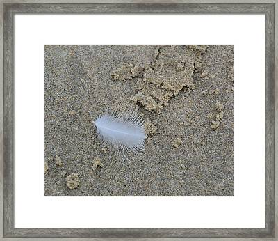 Lighter Than A Feather Framed Print by JAMART Photography