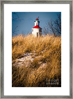 Framed Print featuring the photograph Lighthouse Amongst The Tall Grass by Mark David Zahn Photography