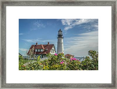 Lighthouse And Wild Roses Framed Print