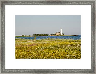 Lighthouse At Yellow Coast Framed Print