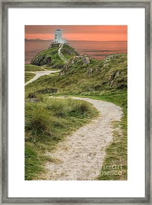 Lighthouse Trail Framed Print