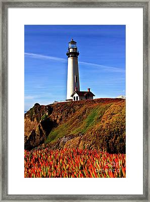 Framed Print featuring the photograph Lighthouse With Red Blooms by Charles Lupica