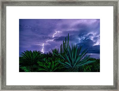 Lightning During Storm Framed Print by Dmitry Sergeev
