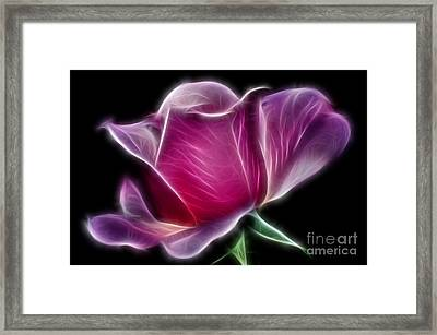 Lightning Rose Framed Print by Kaye Menner