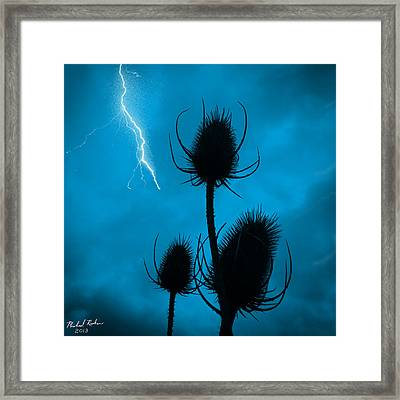 Lightning Spikes Framed Print by Michael Rucker