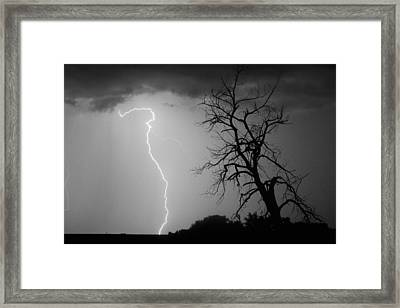 Lightning Tree Silhouette Black And White Framed Print