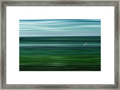 Like A Duck To Water Framed Print