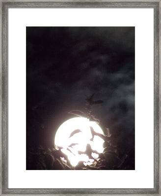 Like A Moth To A Flame Pt2 Framed Print