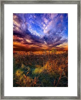 Like A Whisper In The Wind Framed Print by Phil Koch