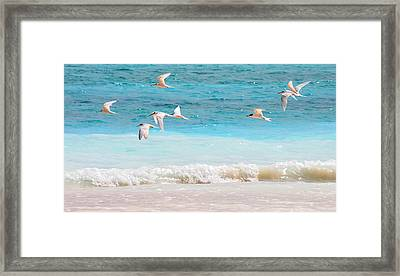 Like Birds In The Air Framed Print
