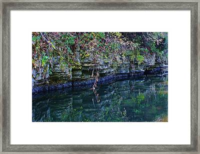 Like Looking Into A Mirror Framed Print by Bruce Bley