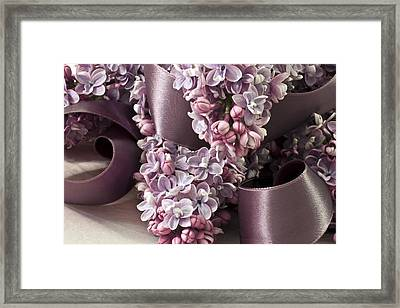 Lilac And Ribbon Curls Framed Print by Sandra Foster