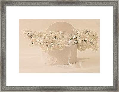 Lilac Purity In A Box Framed Print by Sandra Foster