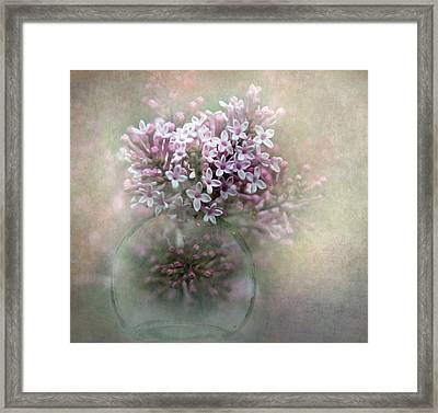 Lilacs For Mom Framed Print by Angie Vogel