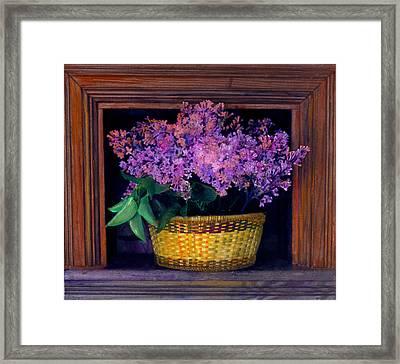 Lilacs Framed Framed Print by Cindy McIntyre