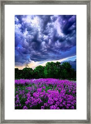 Lilacs Framed Print by Phil Koch