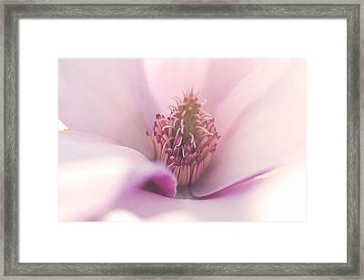 Liliana Framed Print by Faith Simbeck
