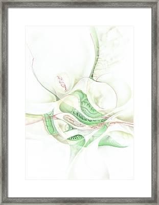 Lilie Framed Print