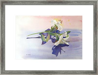 Lilies At Rest Framed Print by Patricia Novack