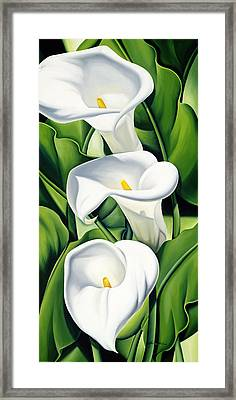 Lilies Framed Print by Catherine Abel