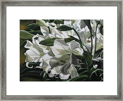 lilies for Easter Framed Print by Alfred Ng