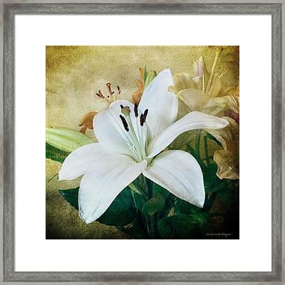 Lilies For Linda Framed Print