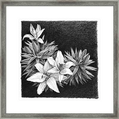 Framed Print featuring the drawing Lilies In Pen And Ink by Janet King