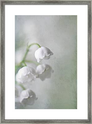 Lilies Of The Valley Framed Print by Annie Snel