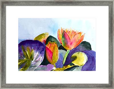 Lilies Of The Water Framed Print by Beverley Harper Tinsley