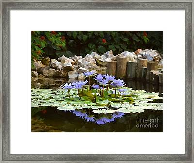 Lilies On The Pond Framed Print