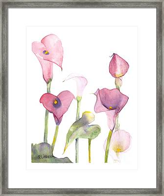 Lilies Framed Print by Sandy Linden