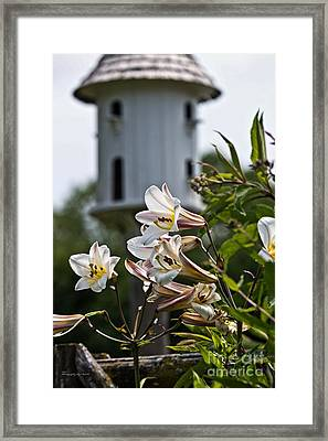 Lillies And Birdhouse Framed Print