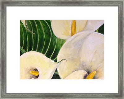 Lillies Framed Print by John Schuller