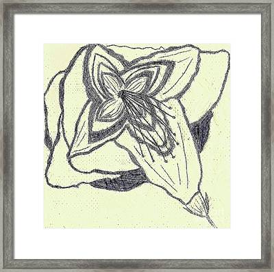 Framed Print featuring the drawing Lilly Artistic Doodling Drawing by Joseph Baril