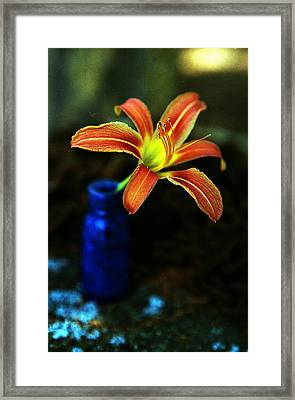 Lilly Blue Framed Print by Aaron Aldrich