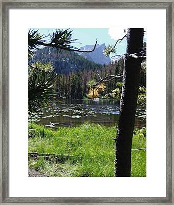 Lilly Lake Framed Print by Stephen Schaps