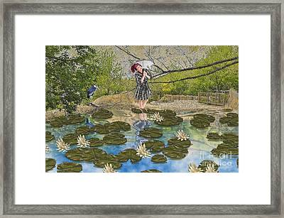 Lilly Pad Lane Framed Print by Liane Wright