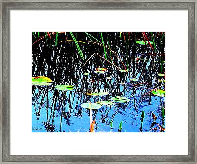 Lilly Pads - Abstract Framed Print