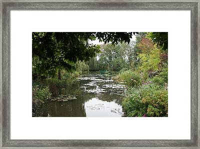 Lilly Pond II Framed Print by Kristine Bogdanovich