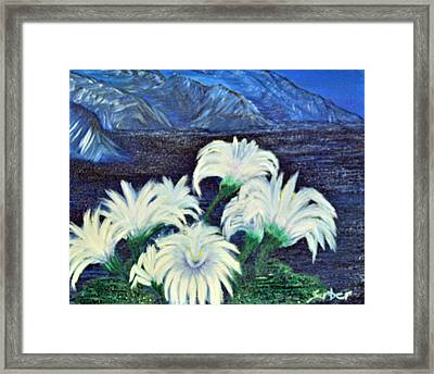 Lillies Framed Print by Suzanne Surber