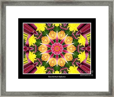 Lily And Chrysanthemums Flower Kaleidoscope Framed Print by Rose Santuci-Sofranko
